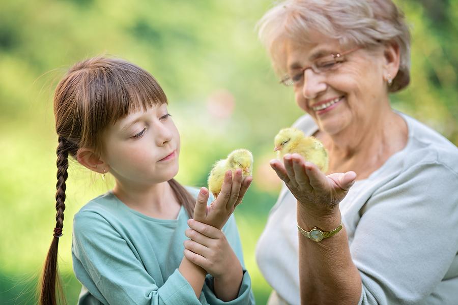 senior wisdom senior woman and little girl holding chicks