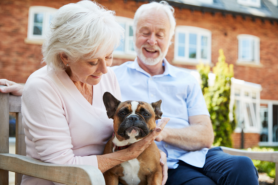 Retired Couple Sitting On Bench With Pet dog